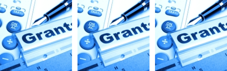 Proposal Preparation - Grant Writing Issues